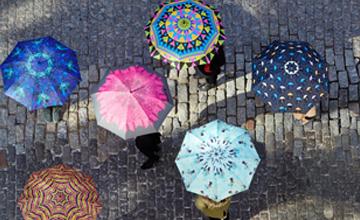 Collection Umbrella